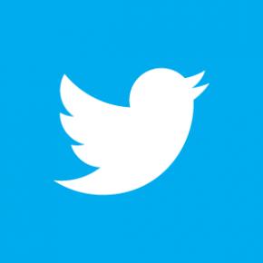 2013 : les voeux des politiques sur Twitter
