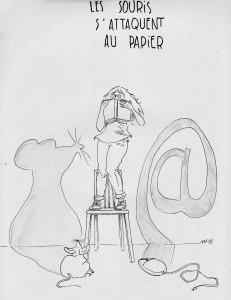 Les souris s'attaquent au papier. (CC Anne Moreau)