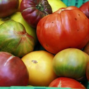 Régime alimentaire: Il était une fois un monde sans viande…