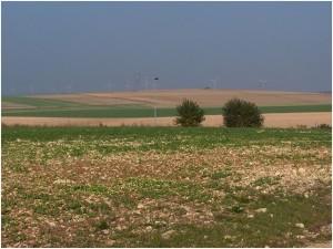 Terre calcaire et champ d'éoliennes aux environs de Bure crédits : Ji-Elle (Wikipédia Commons)